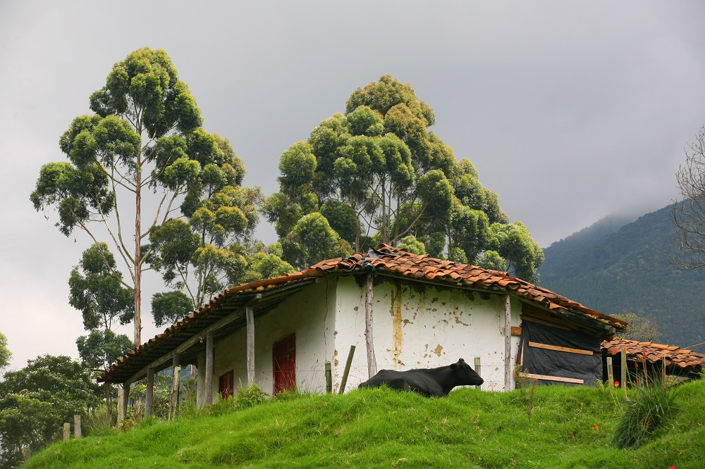 COL3726 1000px Typical farmhouse, Colombia; copyright Christopher P Baker